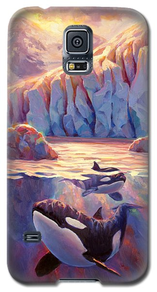 Orca Sunrise At The Glacier Galaxy S5 Case