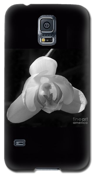 Orchid #2 Galaxy S5 Case