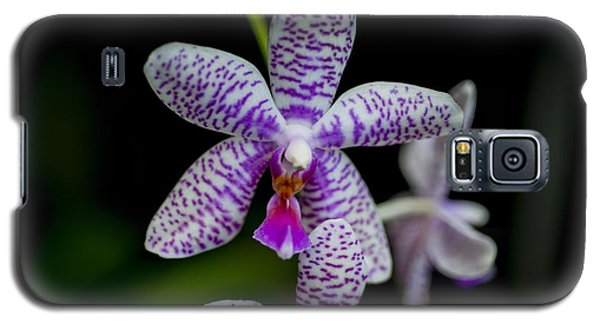 Orchid #3 Galaxy S5 Case