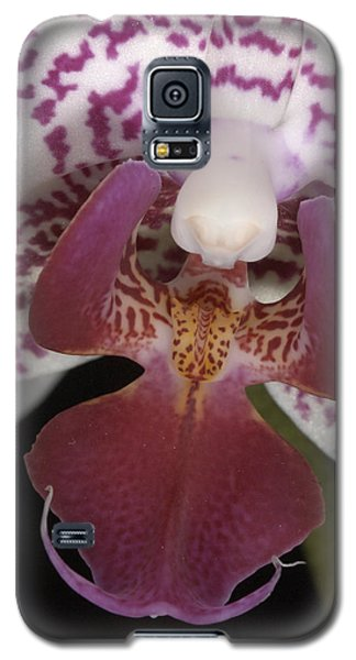 Orchid 474 Galaxy S5 Case