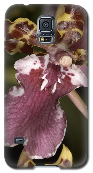 Orchid 482 Galaxy S5 Case
