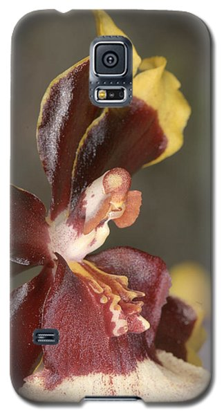 Orchid 493 Galaxy S5 Case