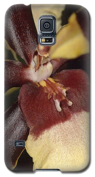 Orchid 496 Galaxy S5 Case