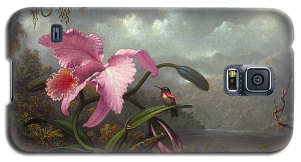 Orchid Galaxy S5 Case - Orchid And Hummingbir by Martin Johnson Heade