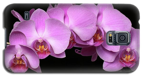 Orchid Arch Galaxy S5 Case