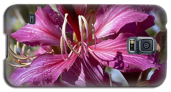 Galaxy S5 Case featuring the photograph Orchid Blur by Penny Lisowski