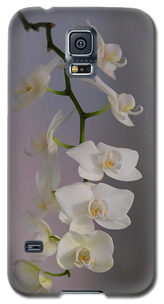 Orchid Cascade Galaxy S5 Case