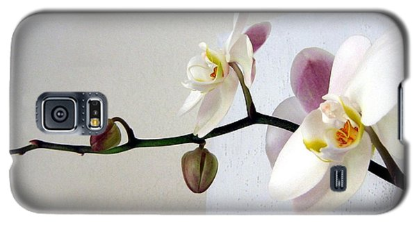 Galaxy S5 Case featuring the photograph Orchid Coming Out Of Painting by Barbara Yearty