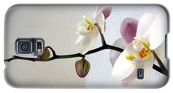 Orchid Coming Out Of Painting Galaxy S5 Case