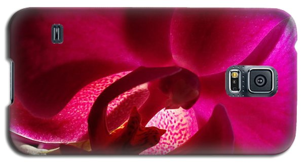 Orchid From My Valentine 2 Galaxy S5 Case