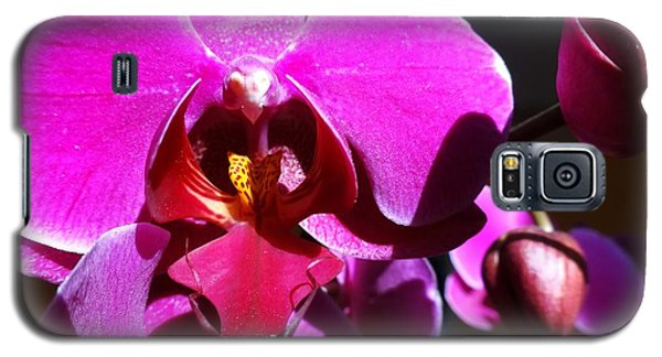 Orchid From My Valentine 3 Galaxy S5 Case