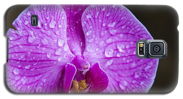 Orchid Galaxy S5 Case by Gandz Photography