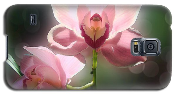 Galaxy S5 Case featuring the photograph Orchid Glow by Kathleen Holley