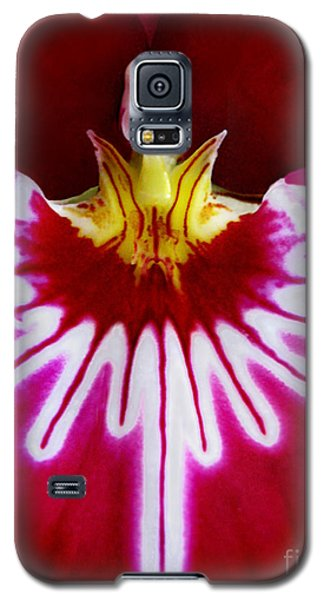 Galaxy S5 Case featuring the photograph Orchid Harlequinn-pansy Orchid by Jennie Breeze