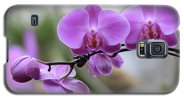 Orchid In Bloom Galaxy S5 Case