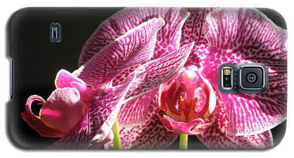 Orchid In The Morning Galaxy S5 Case