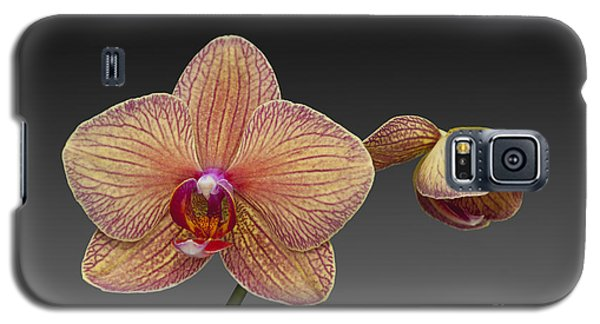 orchid open and closed flower Phalaenopsis Galaxy S5 Case