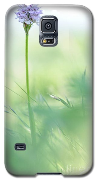 Galaxy S5 Case featuring the photograph Orchid by Simona Ghidini