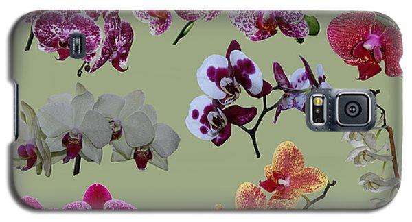 Orchid Splash Galaxy S5 Case