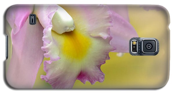 Orchid Whisper Galaxy S5 Case