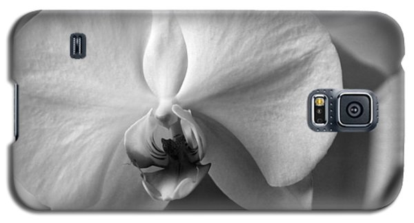 Galaxy S5 Case featuring the photograph Orchidee by Silke Brubaker