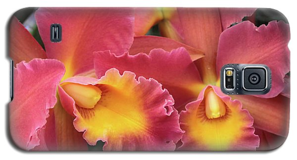 Orchids Ablaze Galaxy S5 Case