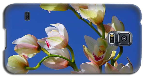 Orchids Against A Blue Sky Galaxy S5 Case