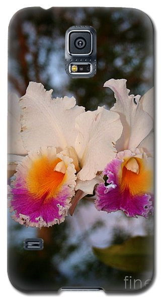 Galaxy S5 Case featuring the photograph Orchid Elsie Sloan by The Art of Alice Terrill