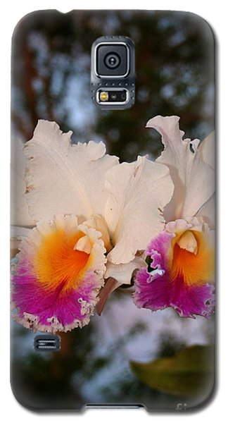 Orchid Elsie Sloan Galaxy S5 Case by The Art of Alice Terrill