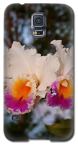 Orchid Elsie Sloan Galaxy S5 Case