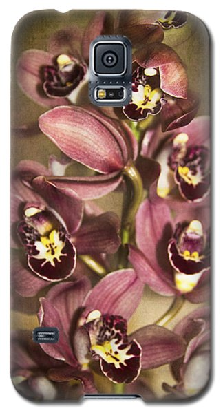 Galaxy S5 Case featuring the photograph Orchids - Cymbidium  by Kerri Ligatich
