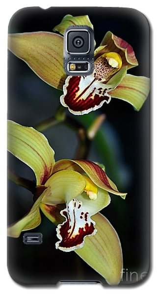 Orchids In The Evening Galaxy S5 Case by Kaye Menner