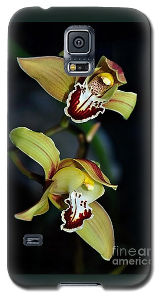 Orchids In The Evening Galaxy S5 Case
