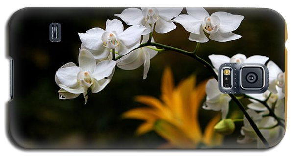 Galaxy S5 Case featuring the photograph Orchids by John Freidenberg