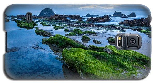 Oregon Blues Galaxy S5 Case