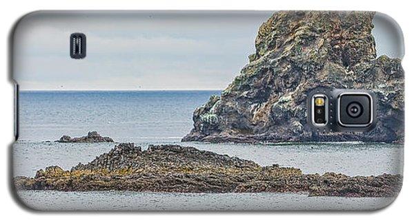Oregon Coast Ecola State Park Galaxy S5 Case by Dennis Bucklin