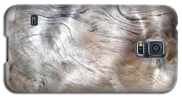 Oregon Driftwood Galaxy S5 Case