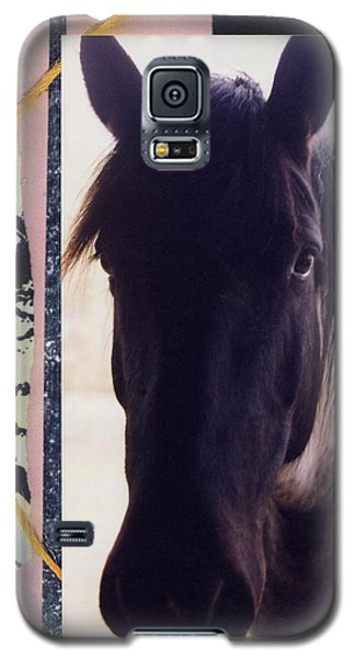 Galaxy S5 Case featuring the photograph Oreo by Mary Ann  Leitch
