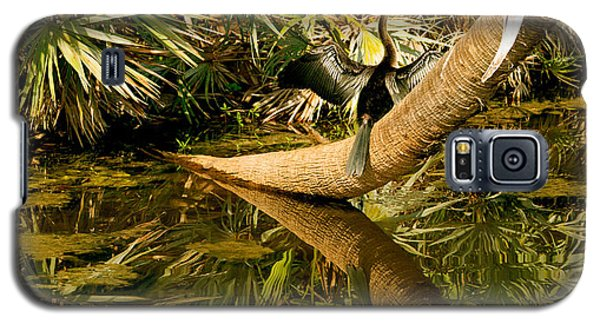 Oriental Darter Anhinga Melanogaster Galaxy S5 Case by Panoramic Images