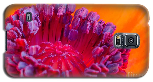 Oriental Poppy Galaxy S5 Case