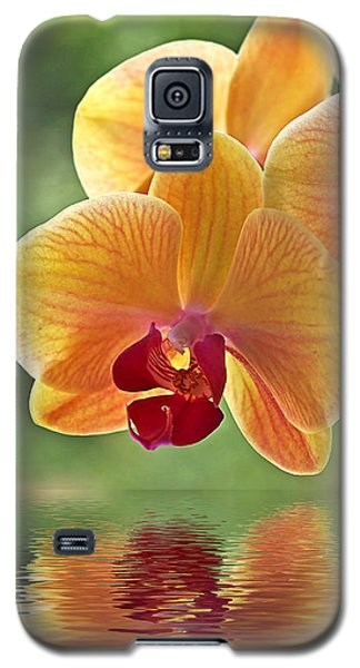 Oriental Spa - Square Galaxy S5 Case