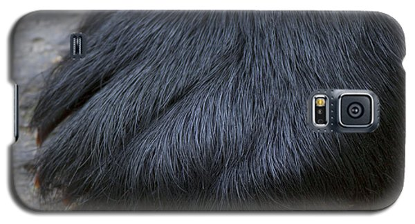 Galaxy S5 Case featuring the photograph Original Bear Claw by Gerry Sibell