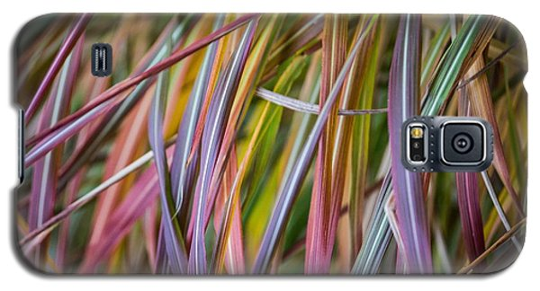 Ornamental Grass Galaxy S5 Case