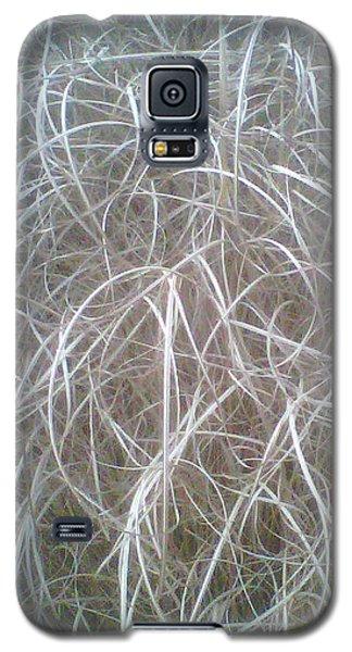 Ornamental Grasses 1 Galaxy S5 Case