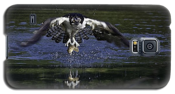 Galaxy S5 Case featuring the photograph Osprey Bird Of Prey by David Lester