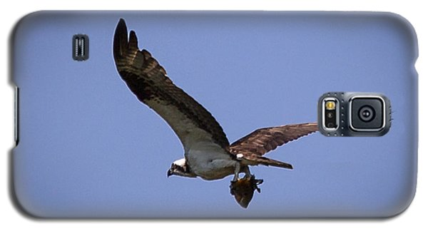 Osprey Carrying Fish  Galaxy S5 Case