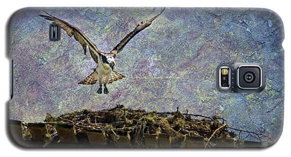 Osprey-coming Home Galaxy S5 Case