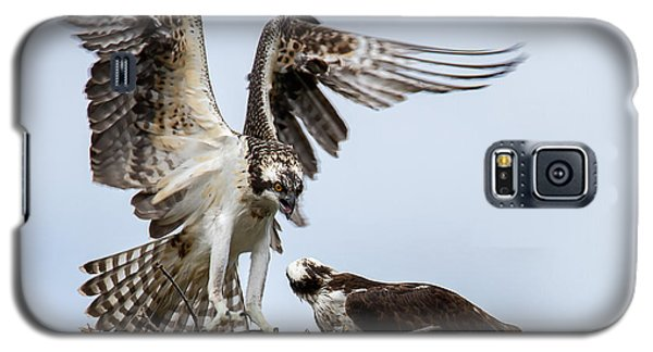 Osprey Coming In For  A Landing Galaxy S5 Case