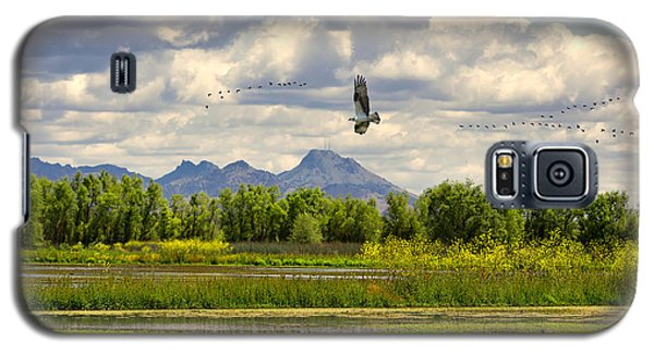 Osprey Over The Wetlands Galaxy S5 Case