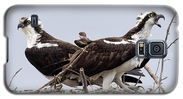 Osprey Pair Galaxy S5 Case